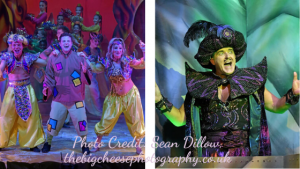 Aladdin, Basingstoke 2019