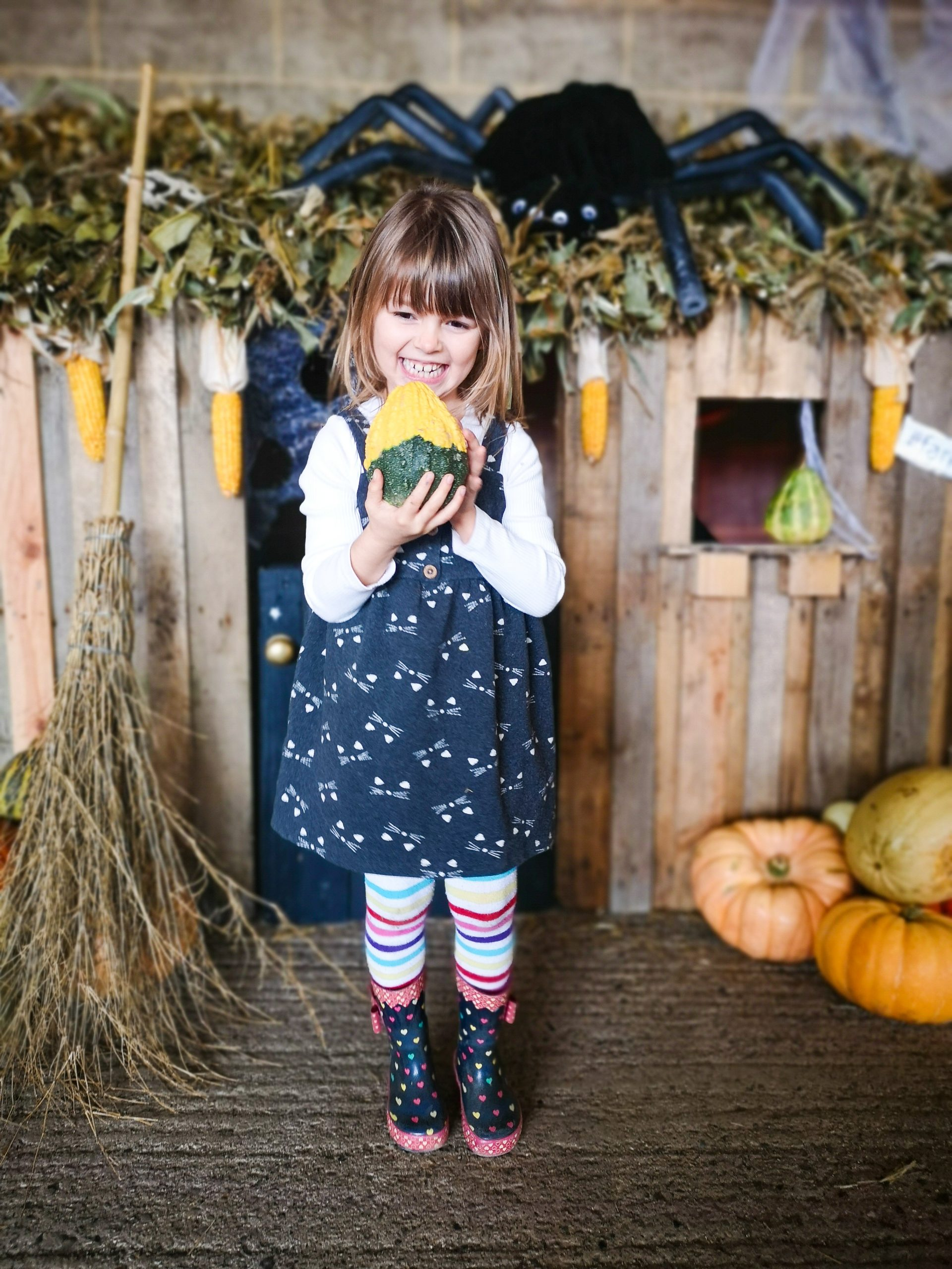 Day Out at Farmer Paul's Pumpkins